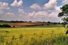 místní krajina